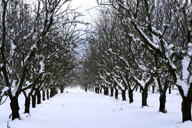 Ερχεται ο βαρύτερος χειμώνας της 10ετίας