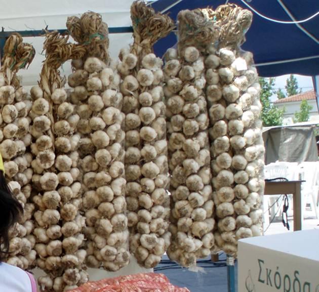 Φεστιβάλ σκόρδου στον Πλατύκαμπο