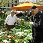 Λειτουργία λαϊκών αγορών ενόψει 28ης Οκτωβρίου