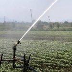 Αποστόλου: Καμία απόφαση για μεταβολή στα τιμολόγια του αρδευτικού νερού
