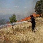 «Μάχη» έως τα ξημερώματα με φωτιές στο ν. Λάρισας