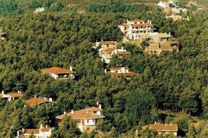 300 αυθαίρετα σε δάση, ρέματα και παραλίες στη Θεσσαλία