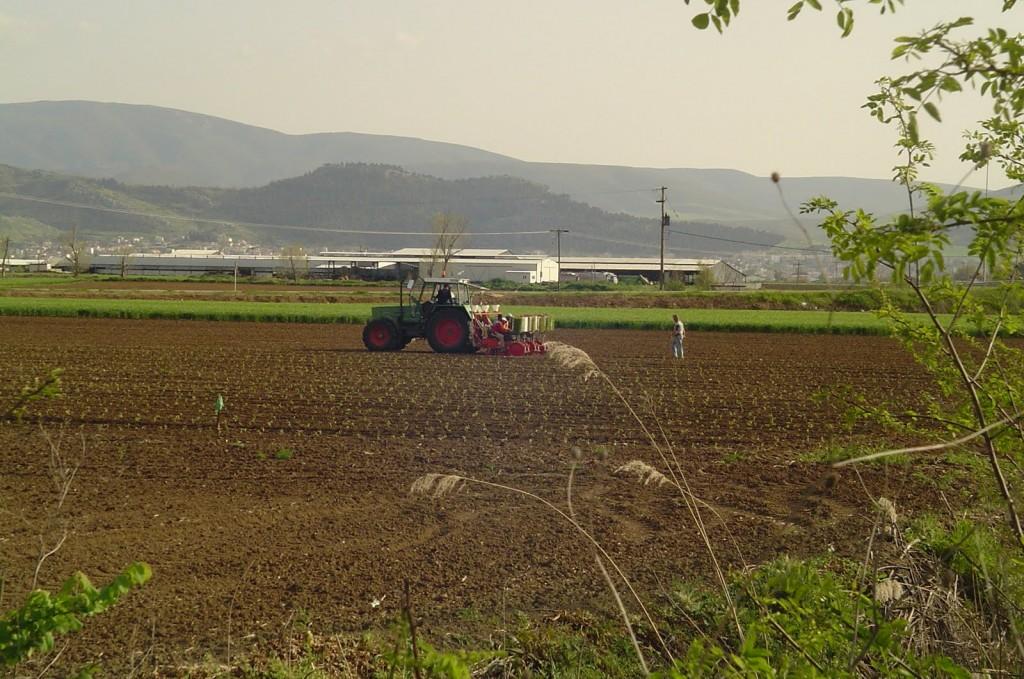 Διαμαρτύρονται με επιστολή τους οι αγρότες του ΑΣ Λιβαδίου Ελασσόνας για τη νιτρορύπανση