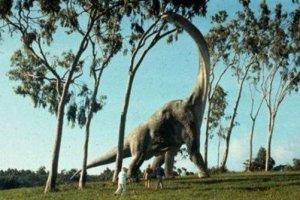 Ανακαλύφθηκε σημαντικός «ξάδερφος» των δεινοσαύρων