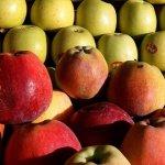 Οφέλη για την Υγεία από τα φθινοπωρινά φρούτα