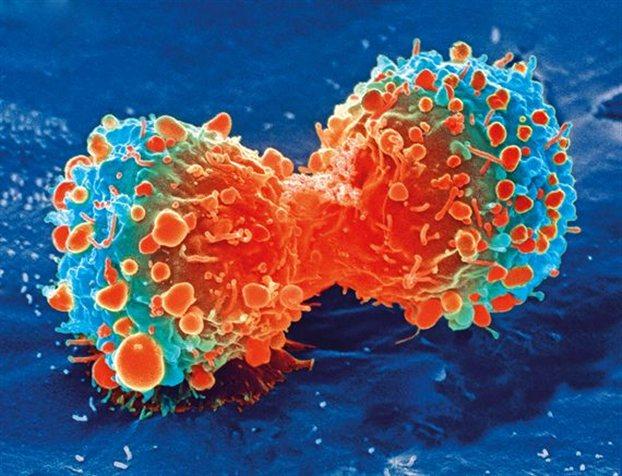 Τα πρώτα αντικαρκινικά νανορομπότ