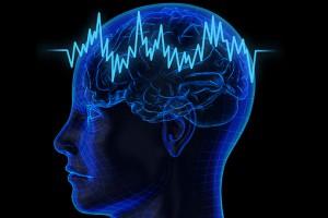 Νεαρός Έλληνας ερευνητής ρίχνει φως στους νευρώνες επιθετικότητας του εγκεφάλου