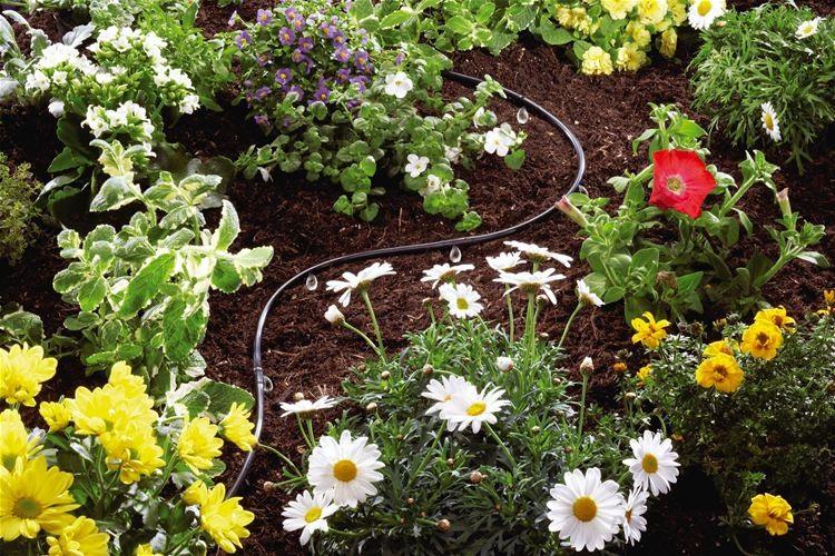 Τα συν του αυτόματου ποτίσματος κήπου