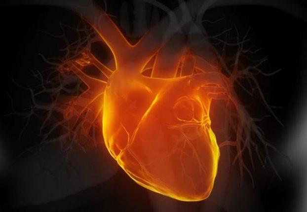 Μεταμόσχευση «νεκρής» καρδιάς