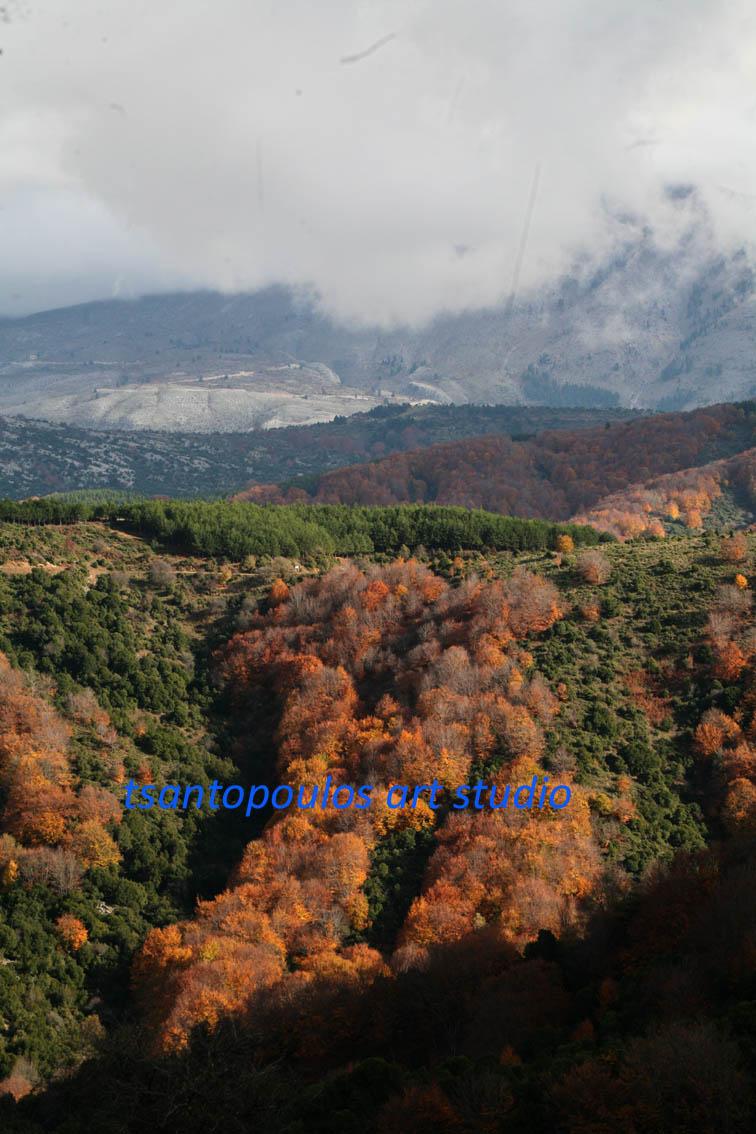 Κίσσαβος (4)