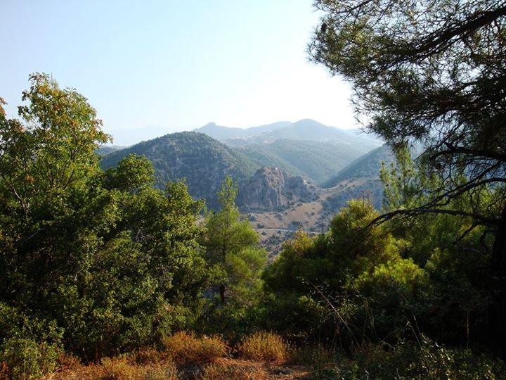 Περίπατος στη φύση της Τσαριτσάνης