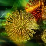 Ανακαλύφθηκαν μικρόβια 50.000 ετών