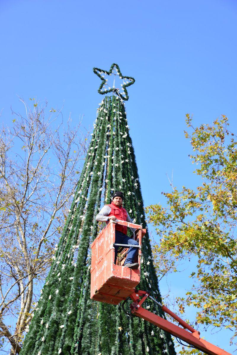 Δέντρο χριστουγέννων (2)