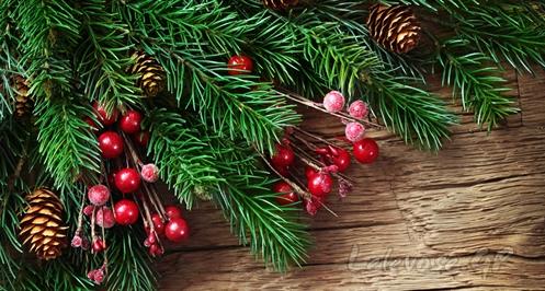 Χριστουγεννιάτικη γιορτή στο Συκούριο