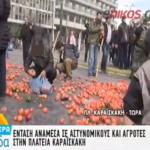 Φωτογραφία που συγκλονίζει: Μαζεύει σε σακούλα ντομάτες που πέταξαν οι αγρότες