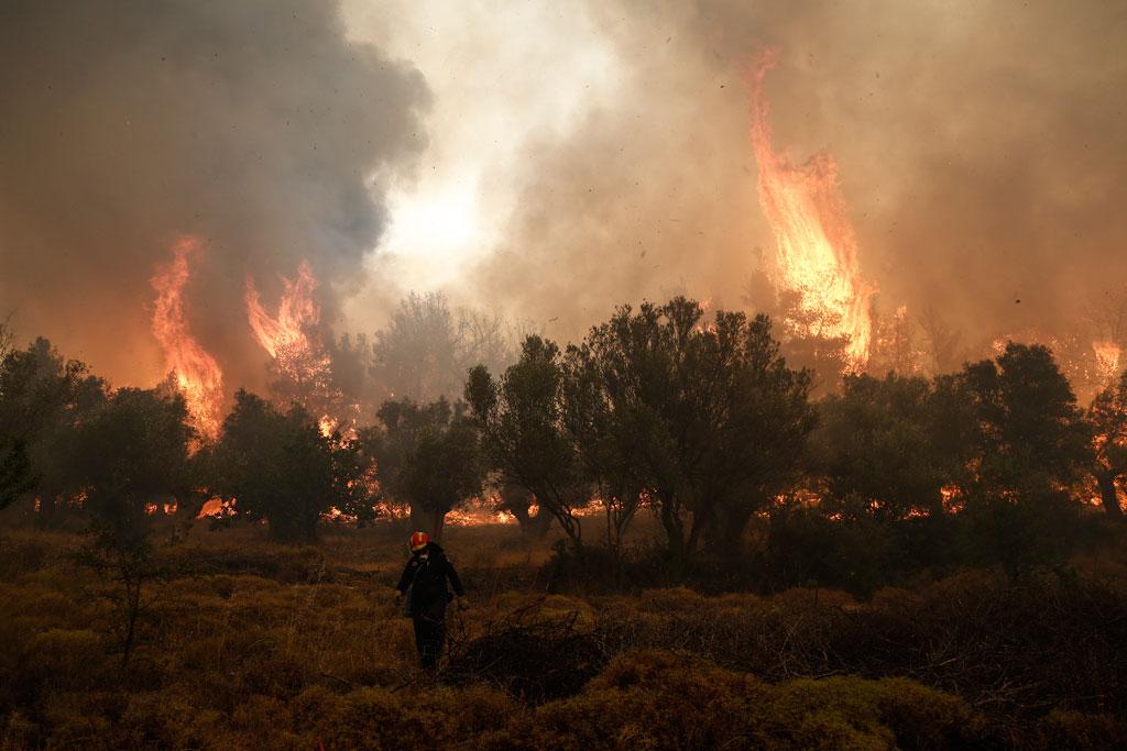 Κάηκαν πάνω από 365 χιλιάδες στρέμματα φέτος