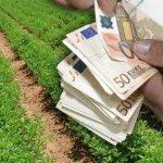 ΕΛΓΑ: Αποζημιώσεις 1,2 εκατ. ευρώ σε δικαιούχους του ν. Λάρισας