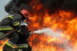 Φωτιές σε Αμπελώνα και Ρήγαιο Φαρσάλων