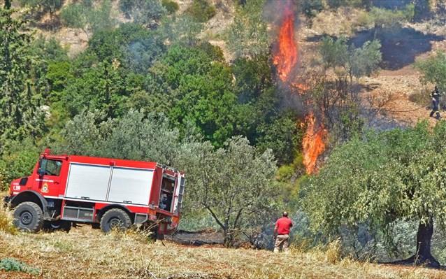 Πυρκαγιά στην Ανάβρα Μαγνησίας