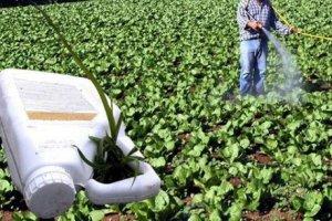 Λάρισα: Φιλοδοξούν να εξαφανίσουν τα φυτοφάρμακα!
