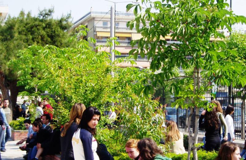 Τα δέντρα των πόλεων αναπτύσσονται πιο γρήγορα σύμφωνα με έρευνα
