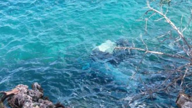 Μοιραία «βουτιά» Ι.Χ στη θάλασσα