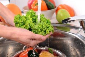 «Η στροφή στη χορτοφαγία θα σώσει εκατομμύρια ζωές»