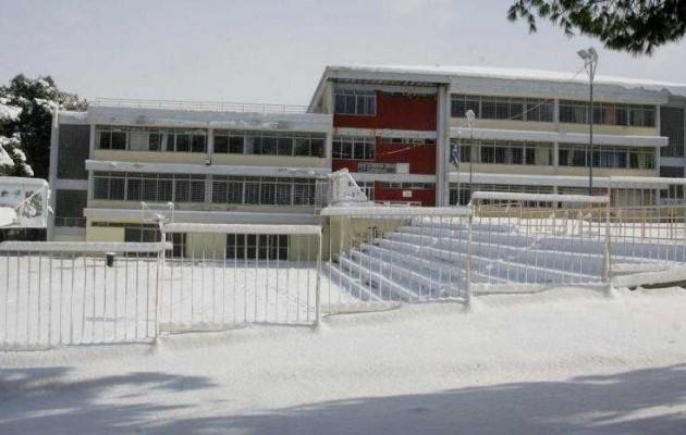 Κλειστά σχολεία την Τρίτη στο ν. Λάρισας