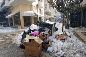 Παγωμένα σκουπίδια στη Λάρισα (ΦΩΤΟ)