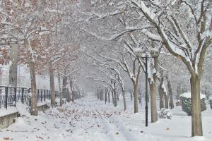 Μικρά-μικρά χιονισμένα…