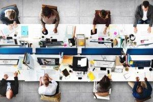 Προγράμματα κοινωφελούς εργασίας για κοινωνιολόγους