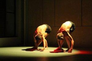 Παραστάσεις & Σεμινάρια Χορού