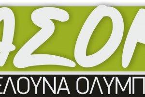 Δήλωση ιδιοκτησίας στο Εθνικό Κτηματολόγιο από ΑΣΟΚ Μελούνα Ολύμπου