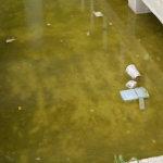 Βρώμικα νερά… (ΦΩΤΟ)