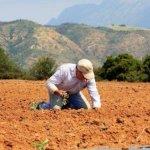 Τον Σεπτέμβριο ο εξωδικαστικός μηχανισμός για τους αγρότες