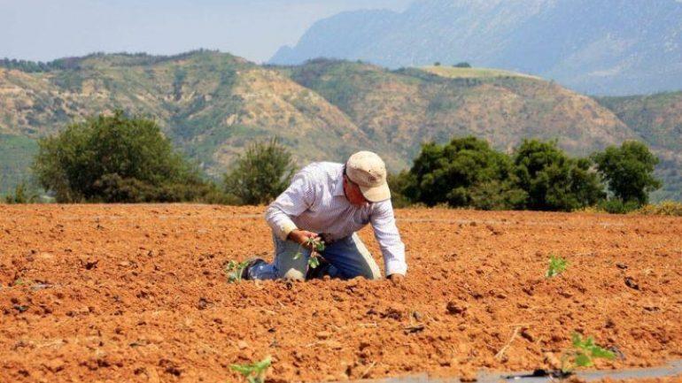 Το αγροτικό τμήμα του ΣΥΡΙΖΑ Λάρισας επισημαίνει για τις συντάξεις ασφαλισμένων με αγροτικά εισοδήματα