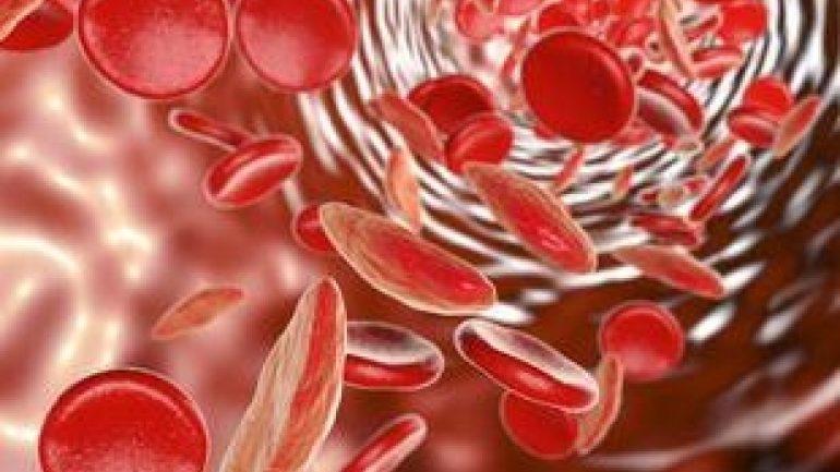 Δημιουργήθηκαν για πρώτη φορά βλαστοκύτταρα αίματος στο εργαστήριο