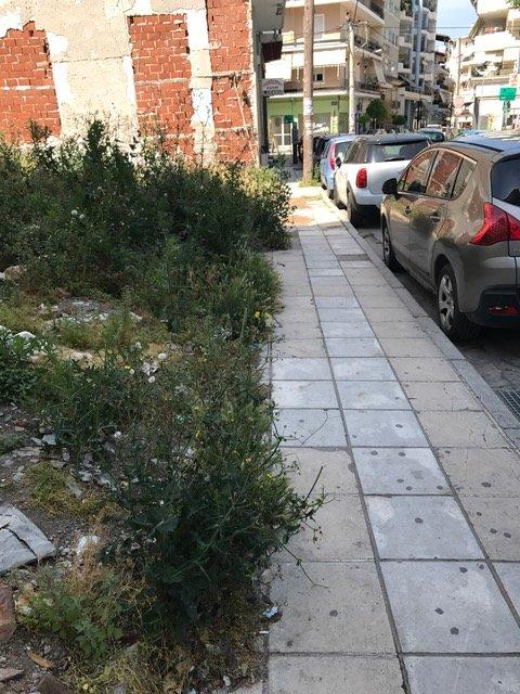 Χόρτα και μπάζα στο κέντρο της Λάρισας (ΦΩΤΟ)