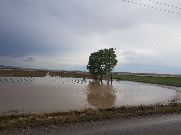 Καταστροφές σε χιλιάδες στρέμματα καλλιεργειών στο Νομό Λάρισας από τις βροχές και το χαλάζι