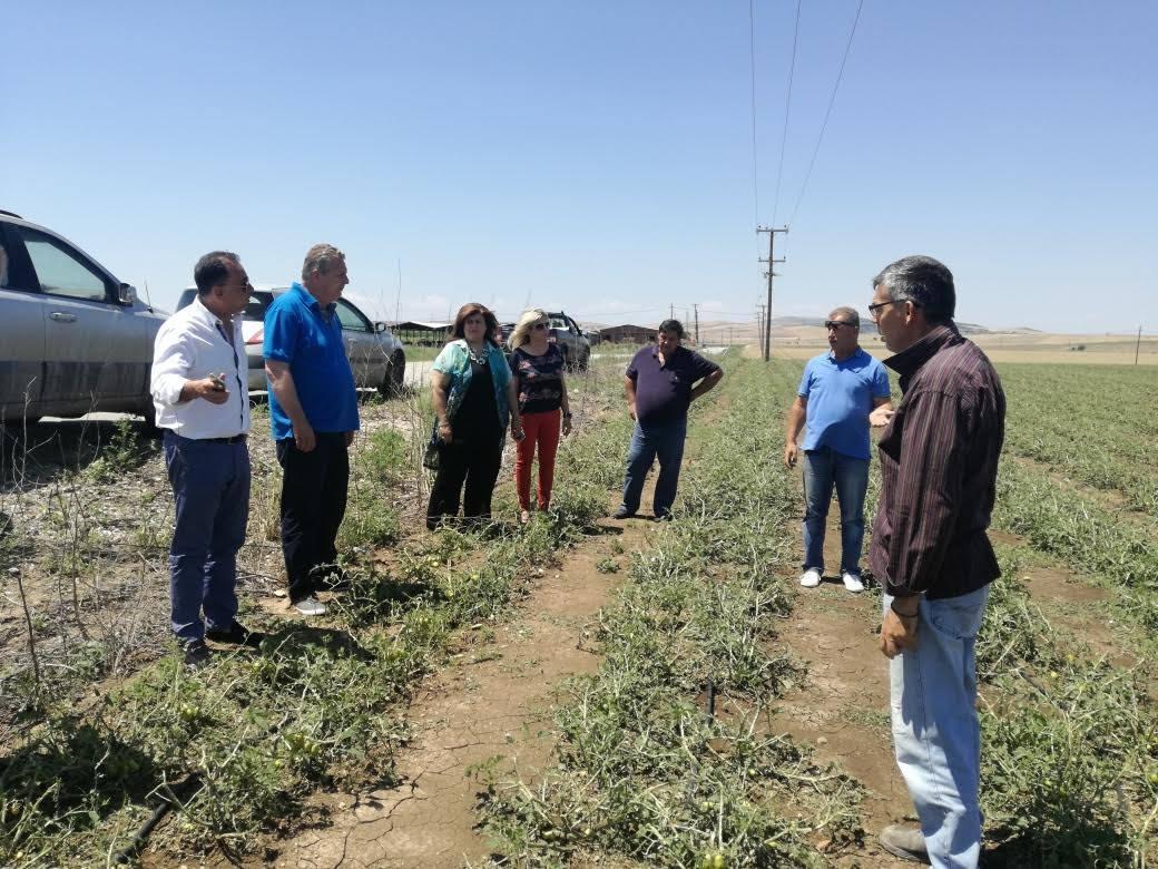Αυτοψία σε πληγείσες καλλιέργειες της Λάρισας έκανε ο Χρήστος Κέλλας