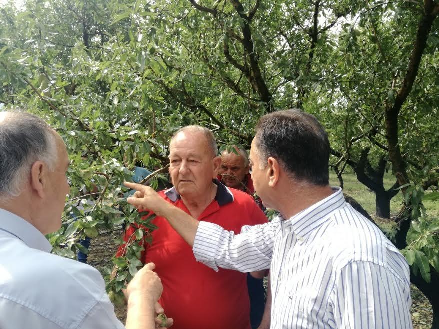 Ο Χρήστος  Κέλλας ζητά έκτακτα μέτρα στήριξης για τους αγρότες στις πληγείσες περιοχές του Δήμου Τεμπών