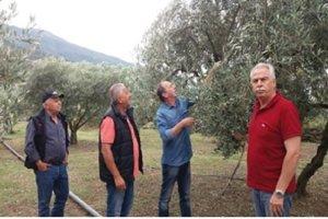 Η «Αριστερή παρέμβαση» στο Δήμο Τεμπών