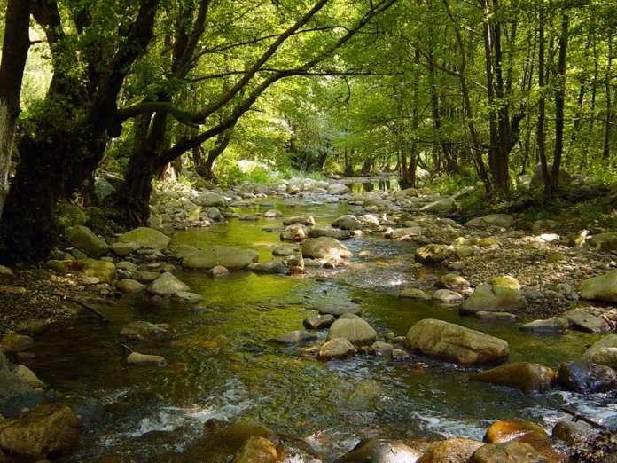 Εντοπίστηκε σώος 35χρόνος που είχε χαθεί στον ποταμό Ερύμανθο