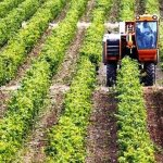 «Ευάλωτη γεωργία της Θεσσαλίας: Παρόν και προοπτικές»