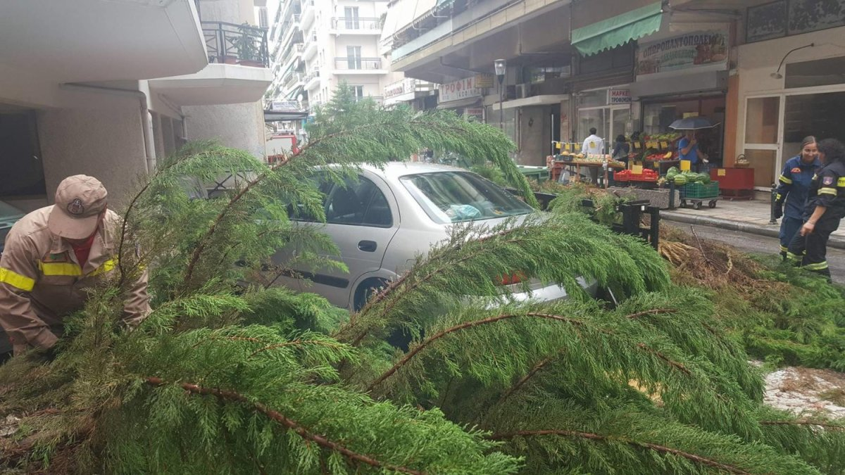 Δέντρο έπεσε επάνω σε αυτοκίνητα στην οδό ΟΓΛ στη Λάρισα