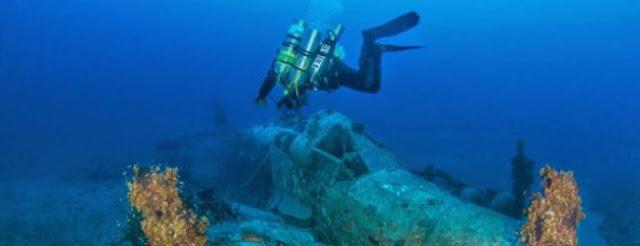 Βρέθηκε μυστηριώδες θαλάσσιο πλάσμα μήκους 20 μέτρων (φωτο)