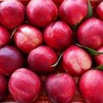 Διανομή φρούτων από το σύλλογο τριτέκνων Λάρισας