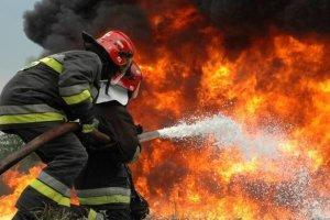 Υπό έλεγχο η φωτιά στη Βασιλική