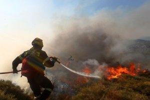 Τί σχεδιάζει η ΕΕ για την καταπολέμηση των πυρκαγιών