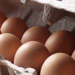 Δείτε τη μεγαλύτερη ομελέτα του κόσμου με… 10.000 αυγά (ΦΩΤΟ)